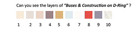 colours_Buses